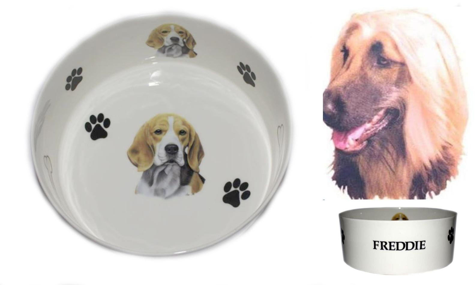 (R) Bone China Personalised AFGHAN HOUND dog food/water pet bowl decorated with PAWPRINTS AND BONES, Personalised with name of your choice- Many dog breeds available. Fun, colourful, new pet bowls. AFGHAN HOUND GIFTS