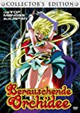 Berauschende Orchidee 1 (Collector's Edition) - Various