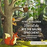 Hörst du, wie die Bäume sprechen?: Eine kleine Entdeckungsreise durch den Wald (2 CD) - Peter Wohlleben