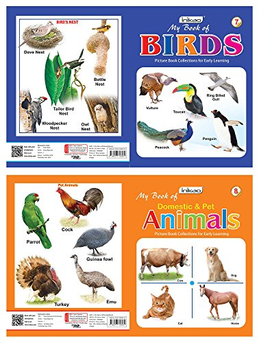 Picture Books Collection for Early Learning (Set of 12)
