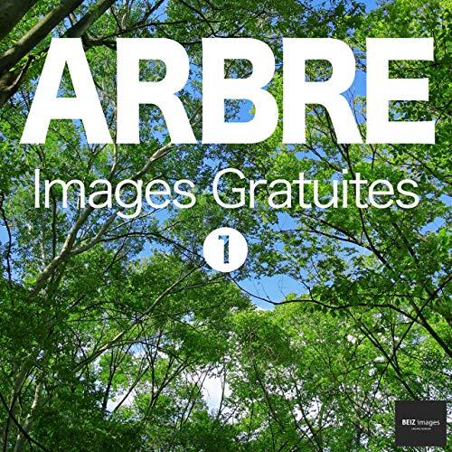 Couverture du livre ARBRE Images Gratuites 1  BEIZ images - Photos Gratuites