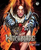 Art Of Witchblade Art Book