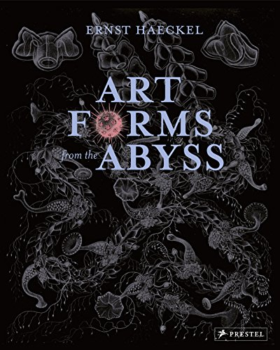 Art Forms from the Abyss: Ernst Haeckel's Images from the HMS Challenger Expedition (Pflanze Qualle)