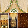 LEDEPLY 3 x 3M Lichterkette, 300er LED Lichterkettenvorhang, IP4 Wasserdicht LED-Lämpchen für Party, Hochzeit, Decoration Garden und Weihnachtsbeleuchtung