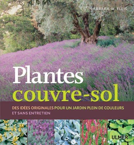 plantes-couvre-sol-des-idees-originales-pour-un-jardin-plein-de-couleurs-et-sans-entretien