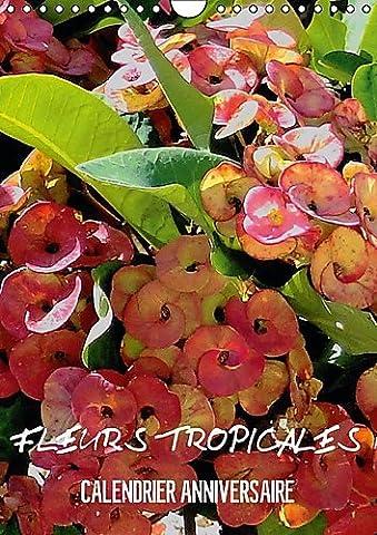 Jardin Tropical - Fleurs Tropicales / Calendrier Anniversaire: La Splendeur