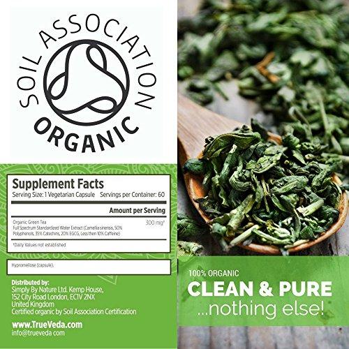 Bio Grüntee Extrakt Kapseln – Bio Siegel  Nahrungsergänzungsmittel aus 100% natürlichen Kräutern   Hochdosiert & Hohe Bioverfügbarkeit EGCG   Ayurveda   Vegan   60 Vegetarische Pillen Einfach zu
