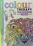 Scarica Libro Art therapy Colour therapy colouring book Elimina lo stress con colori e scarabocchi (PDF,EPUB,MOBI) Online Italiano Gratis