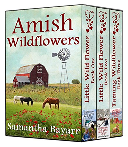 Amish Wildflowers Amish Romance Collection Little Wild Flower Boxed Set