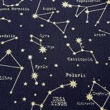 Stoff Meterware Baumwolle Sternbild blau marine Nachthimmel Astronomie Kleiner Bär Sternenhimmel