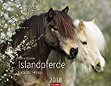 Islandpferde - Kalender 2018 - Weingarten-Verlag - Sabine Stuewer - Wandkalender - 44 cm x 34 cm