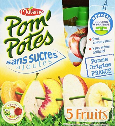 Materne Pom'Potes Gourdes 5 Fruits Pomme & Fruits Jaunes sans Sucres Ajoutés 4 x 90 g - 360 g - Lot de 6