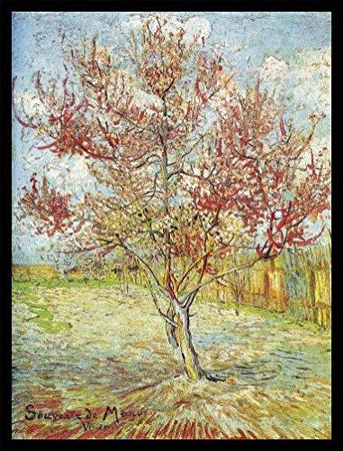 Vincent Van Gogh Póster Impresión Artística con Marco (Madera DM) Negro - El Melocotonero En Flor, Recuerdo De Mauve, 1888 (80 x 60cm)