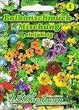 Balkonschmuck Mischung einjährig,reichblühend, farbenprächtig zur Begrünung von Balkonkästen, Zäunen und Wänden.