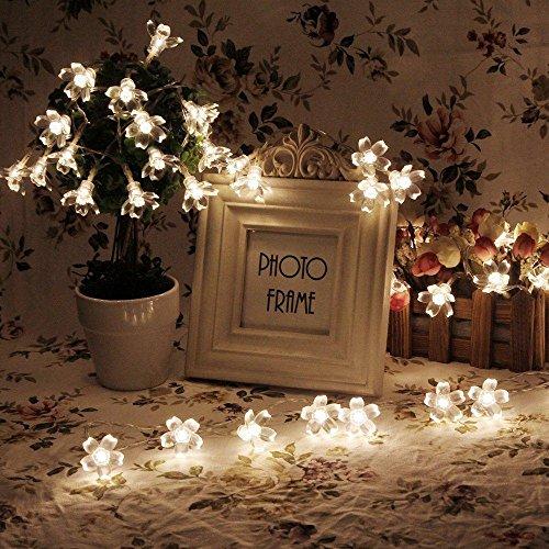 20 LED 6.6ft batteria Peach Blossom Fairy luci della stringa per il Natale Camera domestica Wedding del partito Festival Birthday Celebration 2-String , Warm White