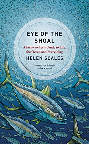 Eye of the shoal a fishwatchers guide to life the ocean and eye of the shoal a fishwatchers guide to life the ocean and everything by fandeluxe Images