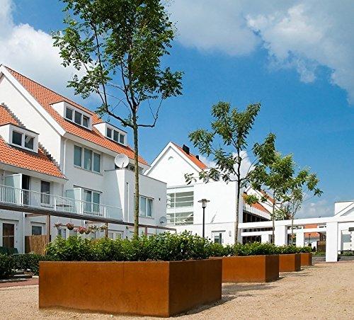 100-100-60-cm-andes-cubo-bajo-de-acero-corten-cubo-planter-arbol-olla-jardin-patio-home-flor-tina