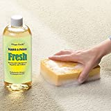 Teppich- und Polster Reinigungskonzentrat