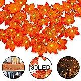 LED Ahornblatt Lichterketten, WeyTy 3M 30 LED-Lichterketten aus Ahorn Herbst Blättergirlande Pumpkin Garland perfekte Deko für Thanksgiving Halloween Weihnachten Balkon Terrasse Wohnzimmer(Warmweiß)
