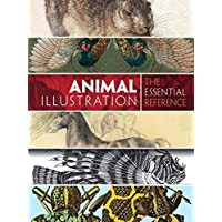 Animal Illustration: The Essential