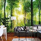 murimage Papier Forêt 3D 366cm x 254cm Photo Mural Bois Arbres Soleil Bureau Wallpaper Colle Inclus
