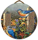wgi Galerie war-lbb Linda 's Bluebirds rund Wall Art
