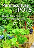 Permaculture in Pots: How to Grow Food in Small Urban Spaces