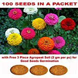 Kraft Seeds Gate Garden Zinnia Flower Seeds with 3 Piece Agro peat Soil for Germination (Multicolour)