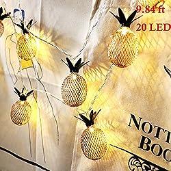 Ananas String Lights, 9.8FT / 3M 20 LED ampoules à piles romantique guirlandes pour mariage Garden Festival Party Halloween Noël intérieur et extérieur décoration-blanc chaud