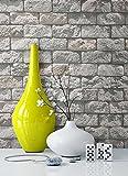 Steintapete in Grau | schöne edle Tapete im Backstein Design | moderne 3D Optik für Wohnzimmer, Schlafzimmer oder Küche inklusive der Newroom-Tapezier-Profibroschüre mit Tipps für perfekte Wände