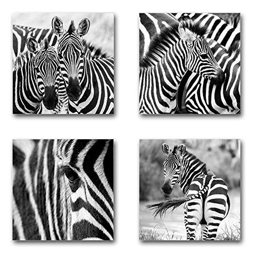 Zebras - Set A schwebend, 4-teiliges Bilder-Set je Teil 29x29cm, Seidenmatte moderne Optik auf Forex, UV-stabil, wasserfest, Kunstdruck für Büro, Wohnzimmer, XXL Deko Bild - Zebra-teile