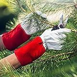 NoCry dornensichere und stichfeste Gartenhand...Vergleich