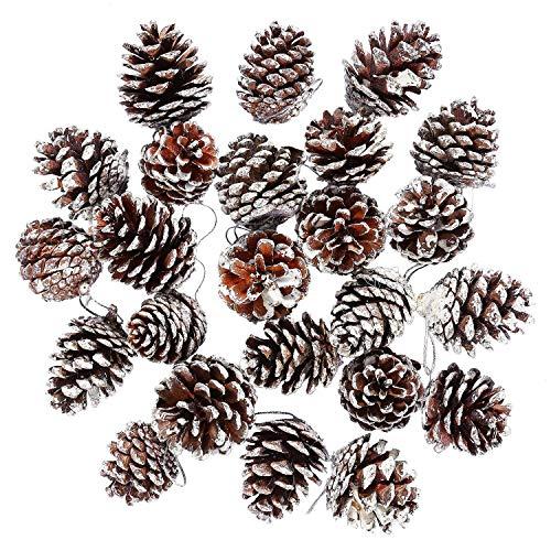 Sunshine D 24 Stück Tannenzapfen, Weihnachten Tannenzapfen Baumschmuck hängen Anhänger mit String für Weihnachtsbaum Dekoration Miniatur Garten Dekoration, Weiß (Miniatur Tannenzapfen)