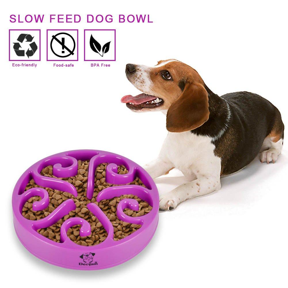 Decyam Comedero Perro Gato, Antideslizante Alimentacion Plato alimentador Tazon Comedero para Mascotas Bebedero Cuenco Bol Recipiente … (Purple)