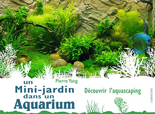 Un mini jardin dans un aquarium (Hors collection - Jardin)
