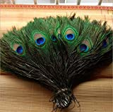 #4: PEACOCK PANKH / FEATHERS PACK OF 15