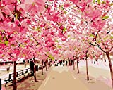 DIY Digital Canvas Oil Painting Gift for Adults Kids Paint by Number Kits Home Decorations- Cherry Blossoms 16*20 inch