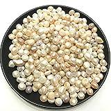 Aiteli - Cuentas sueltas de perlas de agua dulce naturales de 100 g para rellenar jarrones, fiestas, bodas, manualidades, joyería, sin agujeros, 7 - 10 mm