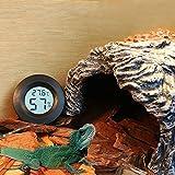 Gorgebuy Digital Thermometer und Hygrometer,für Reptile, Aquarium,Terrarium/Reptile Thermometer,digital Wasser Temperatur Zucht Box Supplies,Thermometer Zubehör-Schwarz