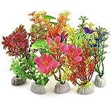 DIGIFLEX 10 x verschiedene Aquariumpflanzen Aquarien