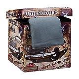 Relaxdays Faltbarer Sitzhocker 38 cm Stabiler Falthocker mit trendigen Motiven als praktische Ablage als Sitzwürfel mit bedrucktem Kunstleder als Aufbewahrungsbox mit Stauraum und Deckel, Car