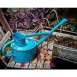 wangxn Meter BewäSserung-Dosen Metall verzinkt Farbe days blue Foto Farbe
