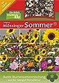 Blumenmischung Original Mössinger Sommer für 20 m² von Saatgut-Manufaktur von Saatgut-Manufaktur - Du und dein Garten