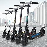 E-Scooter eFlux Lite One 350W Dauerleistung