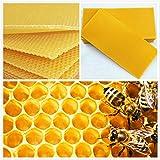 VIDOO 30Pcs A Nido D'Ape Fondazione Bee Hive Cera Telai Ceretta Apicoltura Attrezzatura Bee Hive Pettine Miele