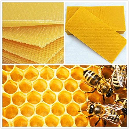LM Lot de 30 coussinets Teint Nid d'abeille ruche Cire Cadres Peigne Matériel épilation à la cire l'apiculture Bee Hive Cadres Miel