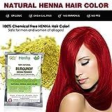 Allin Exporters Burgundy Henna Hair Color - 100% Organic and Chemical Free Henna for Hair Color Hair Care - ( 120 Gram = 2 Packet) Amazon