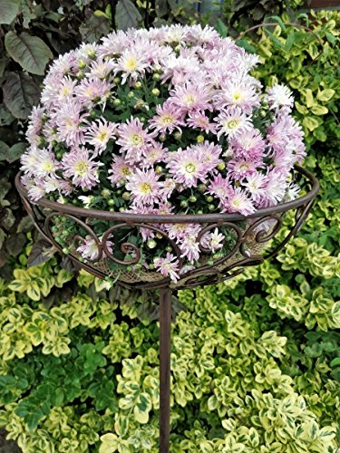 XL Blumenkorb aus Metall zum stecken - 120 cm - Gartenstecker Pflanzenkorb Stab