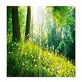 Baoblaze 2er-Set Blumenwand Vorhang Schal Gardinen Kräuselband für Wohnzimmer Schlafzimmer, Auswahl - Löwenzahn-Dschungel