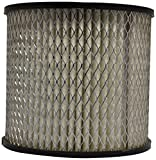 #9: Purolator 79911521 High Performance Replacement Air Filter for Toyota Qualis